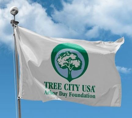 Tree City USA flag image Opens in new window