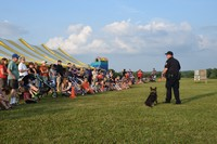 Police officer giving K9 demonstration at national night out event